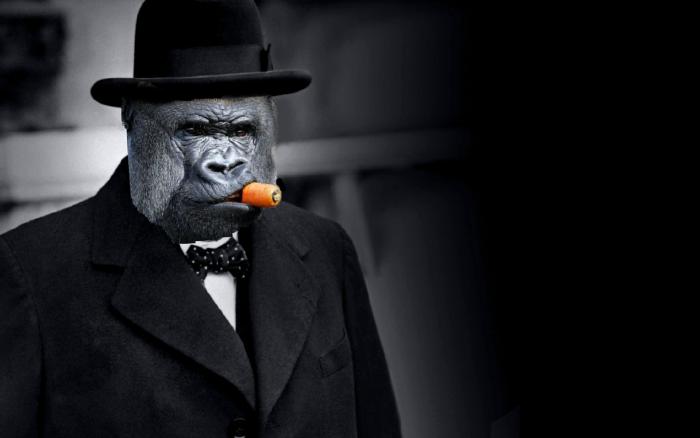 gorilla mafia.png