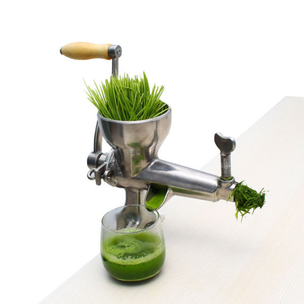 Wheatgrass juicer 1.jpg