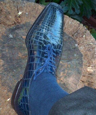Todays shoo -  alligator special.jpg